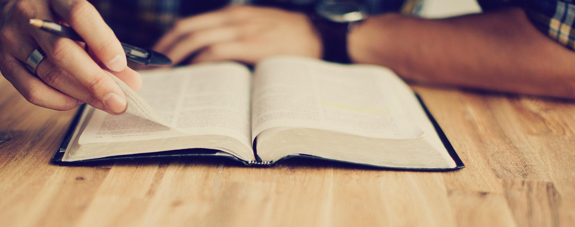 Biblista